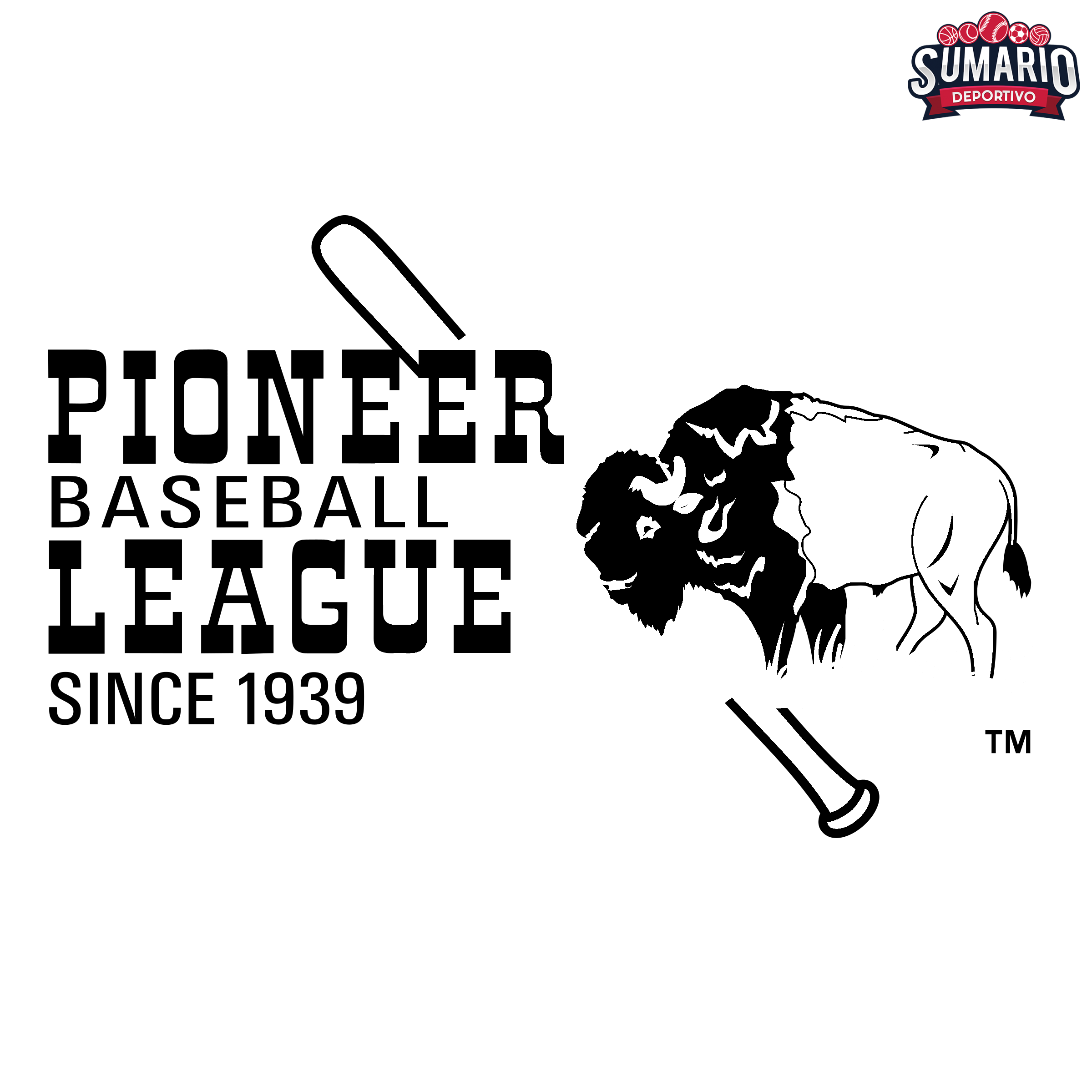 pioneer-league-1-logo-black-and-white